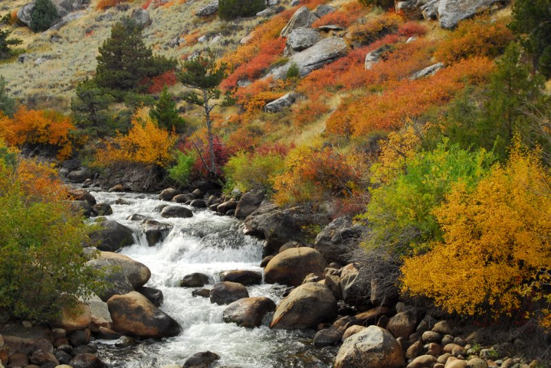 Autumn colors along the Popo Agie River near Lander, Wyoming